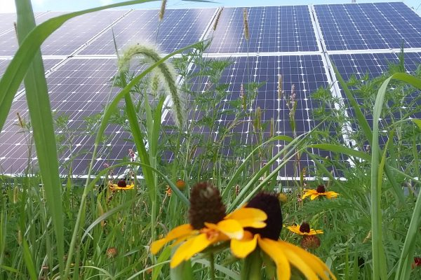 UPDATED: HCED hosts 2019 Solar Fair at Cresco Theatre on Saturday, July 27th